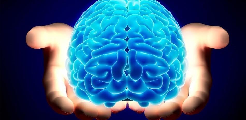 Ekranda Beyin Nakilleri